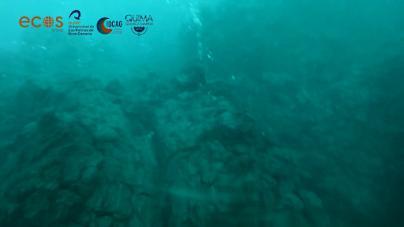 La ULPGC graba las primeras imágenes submarinas del delta lávico en La Palma
