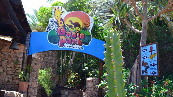 El Cabildo solicita que se declare de interés estratégico el Oasis Park