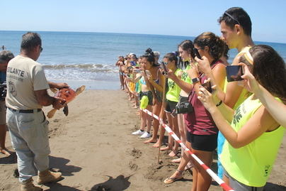 Devuelta al mar en Gran Tarajal una tortuga rescatada en 2017