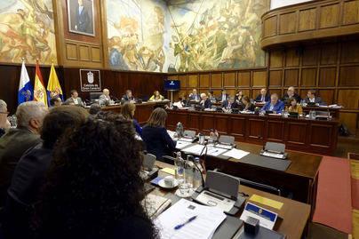 El Cabildo respalda las demandas de los estibadores