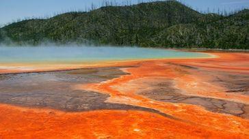 Muere desitegrado al bañarse en aguas termales ácidas de Yellowstone