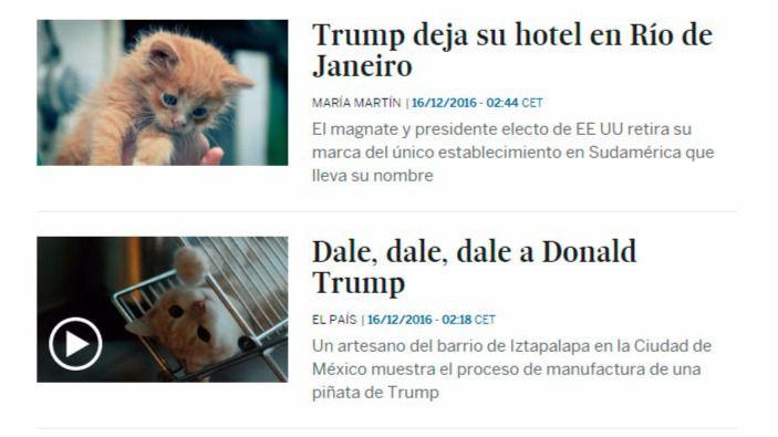 Una aplicación cambia la cara de Trump por gatos en pantalla