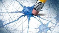 Nuevo avance en la lucha contra el Alzheimer