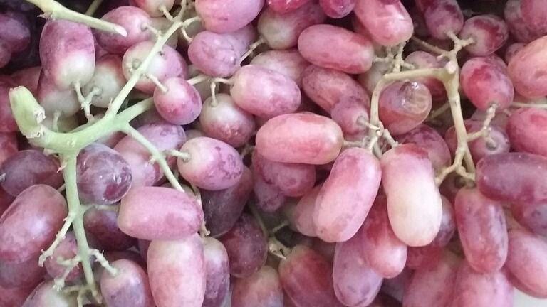 Salchichas, caramelos y uvas, peligro de asfixia para los niños