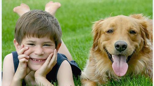 Los niños hasta siete años mejoran su inteligencia si tienen mascotas