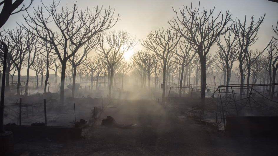 Dan por controlado el incendio de Doñana