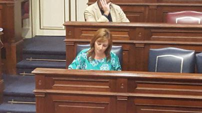 Barreto lleva al Parlamento las medidas para paliar los efectos del incendio de La Palma