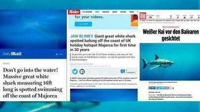 El avistamiento de un tiburón blanco en aguas de Cabrera, en todas las portadas británicas y alemanas