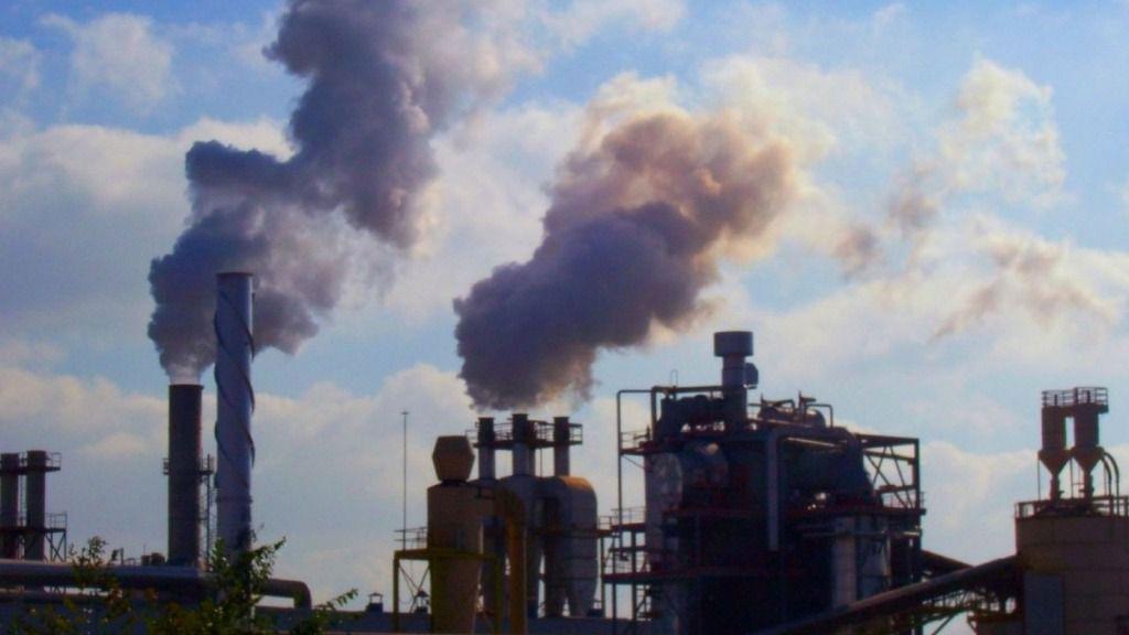 """""""Descarbonizar"""", """"VAR"""" y """"micromachismo"""", entre las palabras del 2018"""