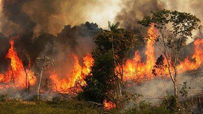 Bolsonaro critica la decisión de Macron de incluir el incendio del Amazonas en la agenda del G7