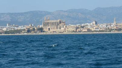 El cambio climático subirá un metro el nivel del Mediterráneo en 2100