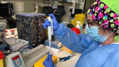 Temor ante la evolución del coronavirus en España: otros 580 casos en las últimas 24 horas