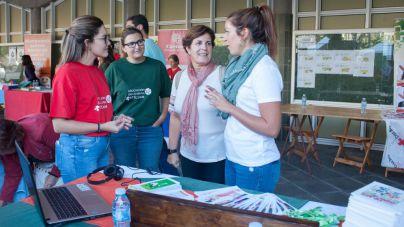 El 64% de las personas voluntarias son mujeres según el censo del programa Tenerife Solidario