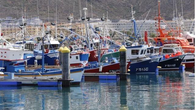 El Gobierno asegura que Canarias alcanzará las 500 toneladas de atún rojo en 2020
