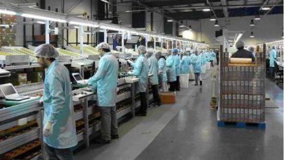 El índice de negocio de la Industria canaria creció el 1,2% anual en mayo