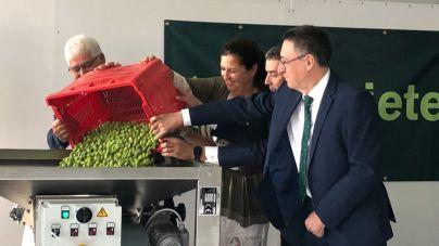 Inaugurada en El Hierro la primera almazara pública para producir aceite