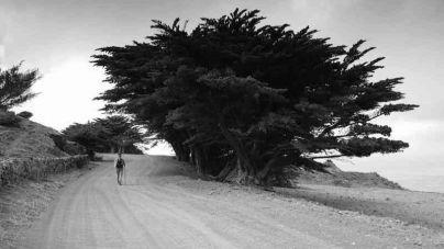 El fotógrafo José Luis Espinosa gana el concurso El Hierro Fototrek 2018