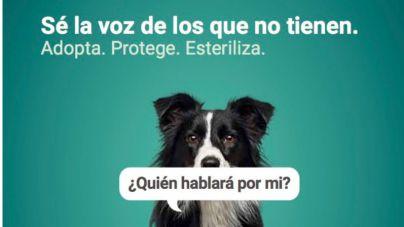 """Campaña """"Quén hablará por mi"""" contra el maltrato animal"""