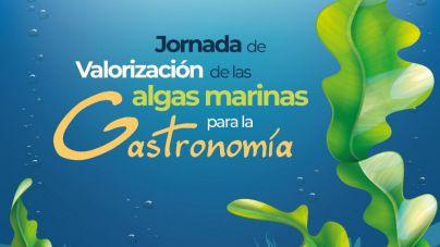 Gran Canaria se prepara para participar del negocio mundial de algas