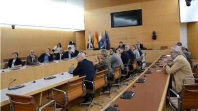El Cabildo pide al Gobierno de Canarias más 'presión' sobre Aena para lograr la nueva terminal en Tenerife Sur