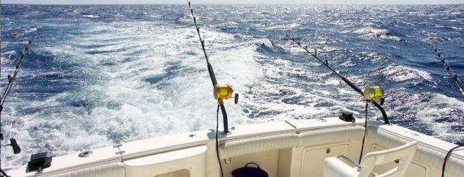 Canarias concedió 29.120 licencias de pesca recreativa en 2018
