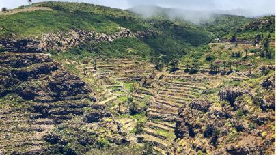 Los bancales de La Gomera: ingenio y supervivencia de los gomeros