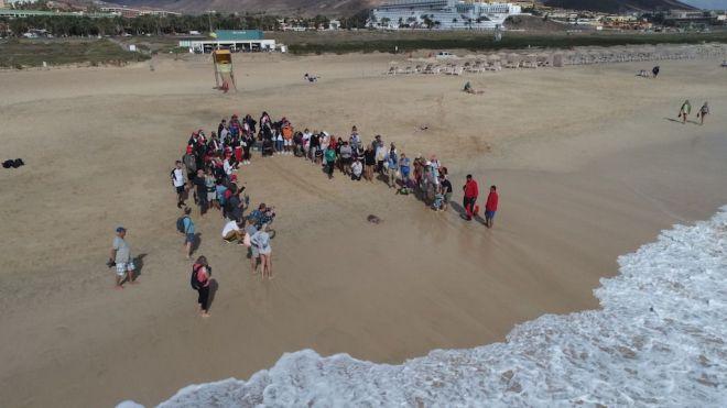 Estudiantes de intercambio y del IES La Oliva participan en una liberación de tortuga en Morro Jable