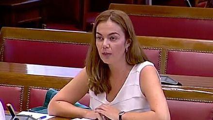 El Senado impide celebrar un pleno monográfico sobre Canarias