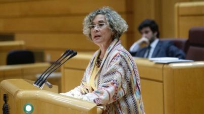 Julios: 'Me gustaría saber si el PSOE hubiera asumido sumisamente perder 345 millones'