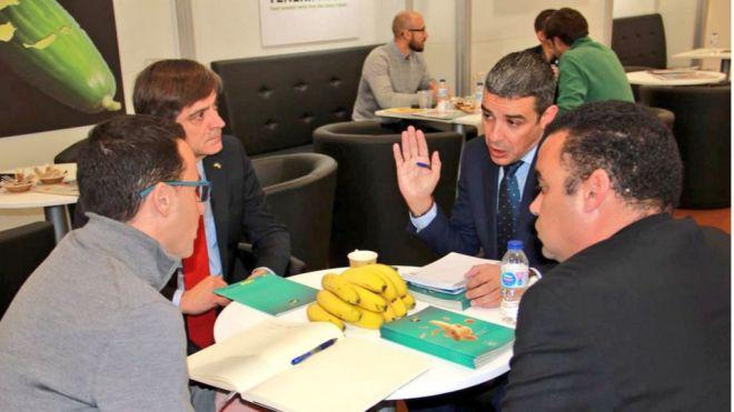 Gobierno de Canarias y Asprocan piden al Estado que solicite una reunión urgente del Comité Mixto del Plátano
