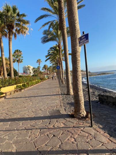 Canarias pierde 46 millones por día sin turistas