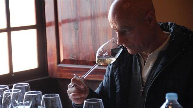 Más de 170 vinos optan a ser elegidos el mejor de Canarias