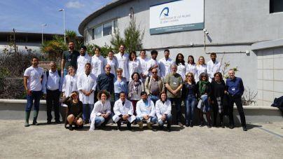 Veinte investigadores participan en Taliarte en un curso de crianza de peces para estudios óseos