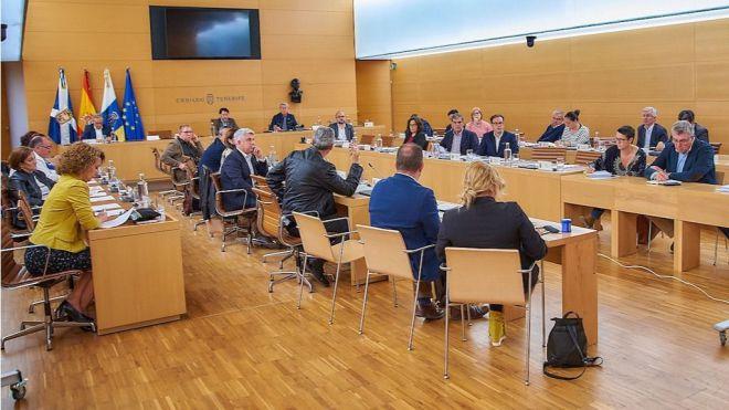 El Cabildo informa a los ayuntamientos sobre el protocolo de actuación y el tratamiento de las termitas