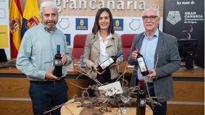 El descorche de vinos de Gran Canaria descubrirá los sabores de la última cosecha de 73.000 kilos más