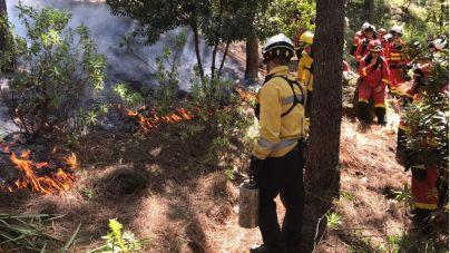 El Cabildo forma a la UME en el uso del fuego controlado para la extinción de incendios