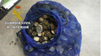 El Seprona denuncia a 3 personas por la pesca de 32 kilos de lapas en Gran Canaria