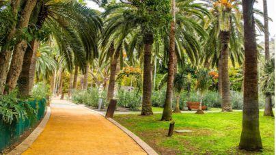 Santa Cruz celebra este viernes la II Jornada de Parques y Jardines