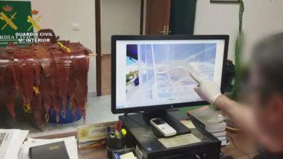 La Guardia Civil interviene 627 ejemplares vivos de reptiles provenientes del tráfico ilícito