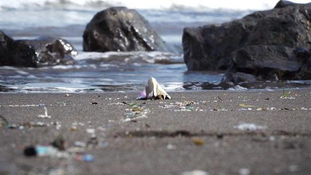 Casi el 60% de las playas canarias afectadas por el plástico