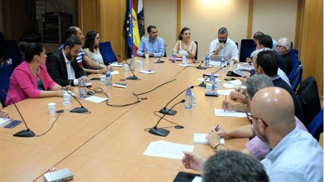 Gobierno de Canarias y Cabildo de Tenerife destinarán 270.000 euros a erradicar la plaga de termitas