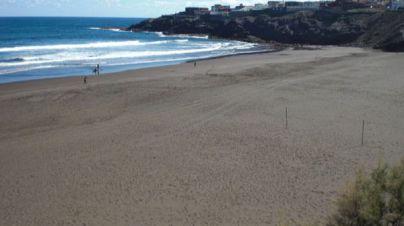 Telde advierte de la presencia de medusas en Playa del Hombre