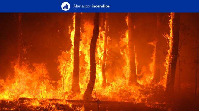 Alerta Máxima por Riesgo de Incendios Forestales en El Hierro, La Palma, La Gomera, Tenerife y Gran Canaria
