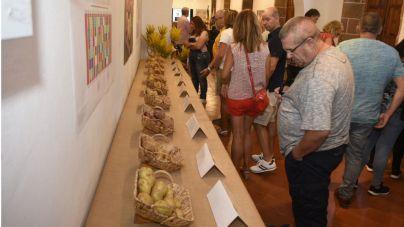 Cientos de personas disfrutan de la Feria de la Papa de Gran Canaria en Teror