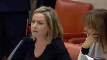 Oramas critica el Decreto Ley de Thomas Cook no da respuesta a lo que necesita Canarias