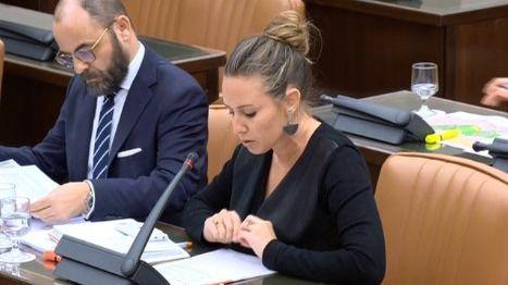 """""""El PSOE solo se acuerda de Canarias cuando está en precampaña"""""""
