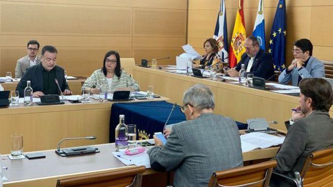 El Cabildo aprueba el inicio del tratamiento contra las termitas en la Isla