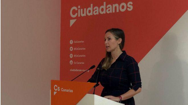 """Rodríguez: """"Hay que poner en marcha medidas que garantice la conectividad de las islas"""""""