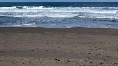 El municipio de Telde contará con dos playas habilitadas para los perros