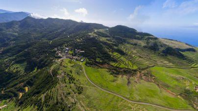CC-PNC solicita que se amplíe el programa de erradicación de flora exótica invasora con una dotación de 700.000 euros